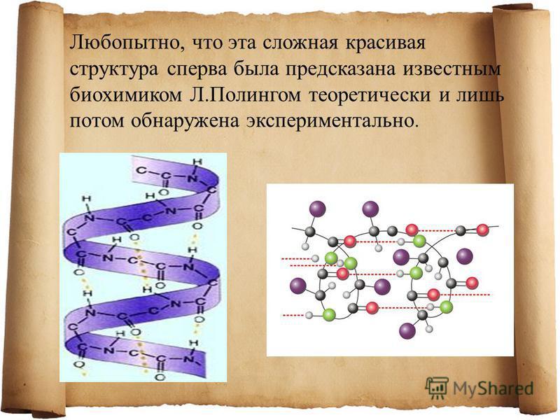 Любопытно, что эта сложная красивая структура сперва была предсказана известным биохимиком Л.Полингом теоретически и лишь потом обнаружена экспериментально.
