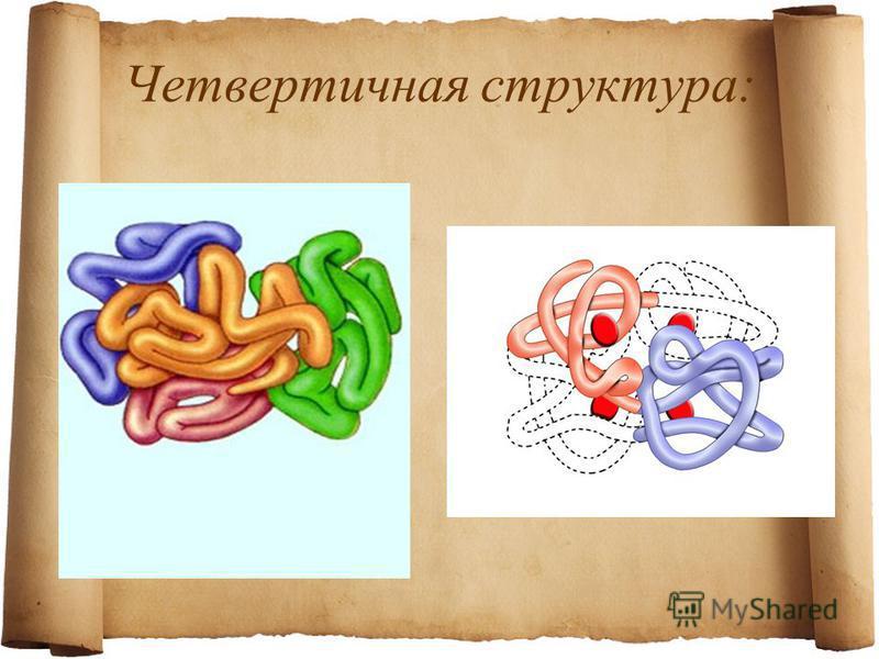 Четвертичная структура: