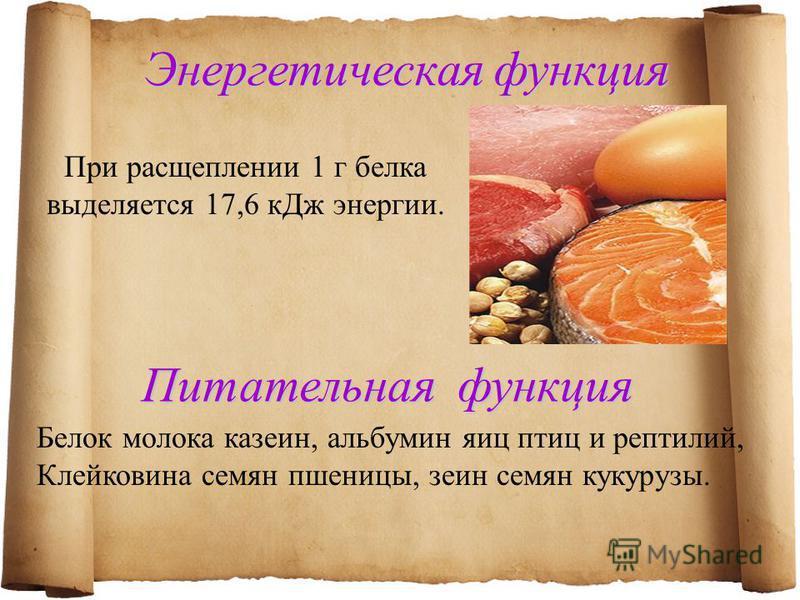 Энергетическая функция При расщеплении 1 г белка выделяется 17,6 к Дж энергии. Питательная функция Белок молока казеин, альбумин яиц птиц и рептилий, Клейковина семян пшеницы, зеин семян кукурузы.