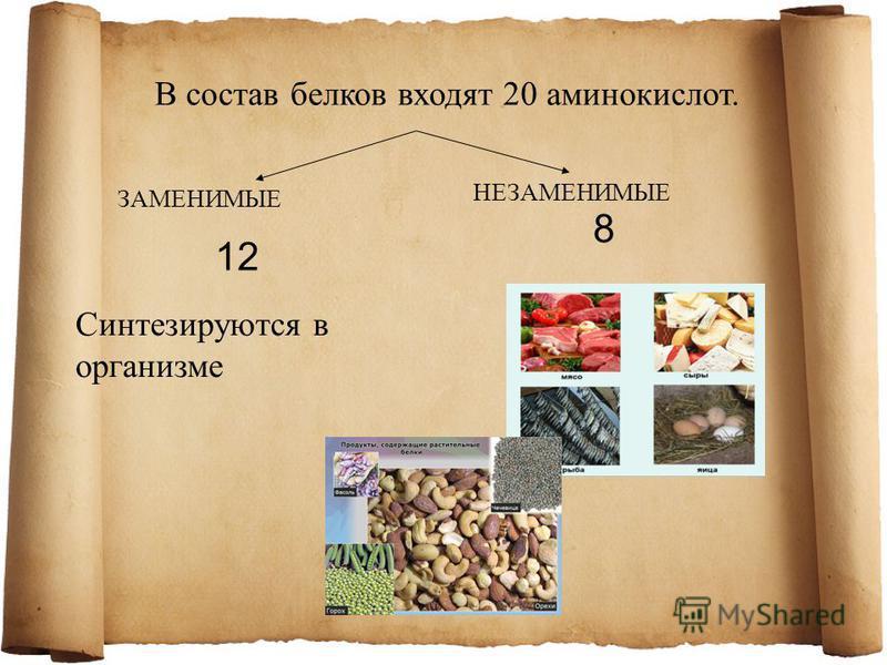 В состав белков входят 20 аминокислот. ЗАМЕНИМЫЕ НЕЗАМЕНИМЫЕ 12 8 Синтезируются в организме