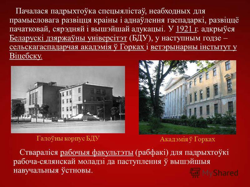 Пачалася падрыхтоўка спецыялістаў, неабходных для прамысловага развіцця краіны і аднаўлення гаспадаркі, развіццё пачатковай, сярэдняй і вышэйшай адукацыі. У 1921 г. адкрыўся Беларускі дзяржаўны універсітэт (БДУ), у наступным годзе – сельскагаспадарча