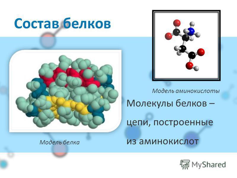 Из чего состоит белок? O2O2 N C H2 H2 S