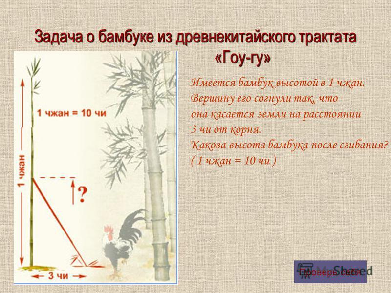 Задача о бамбуке из древнекитайского трактата «Гоу-гу» Имеется бамбук высотой в 1 чжан. Вершину его согнули так, что она касается земли на расстоянии 3 чи от корня. Какова высота бамбука после сгибания? ( 1 чжан = 10 чи ) Проверь себя
