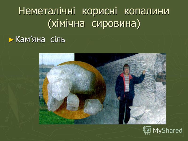 Неметалічні корисні копалини (хімічна сировина) Камяна сіль Камяна сіль
