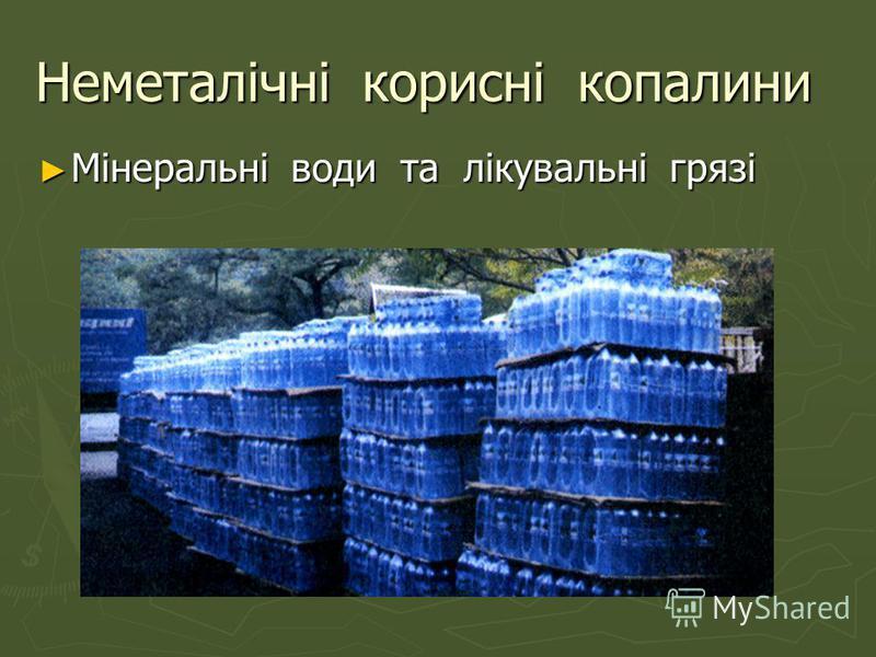 Неметалічні корисні копалини Мінеральні води та лікувальні грязі Мінеральні води та лікувальні грязі