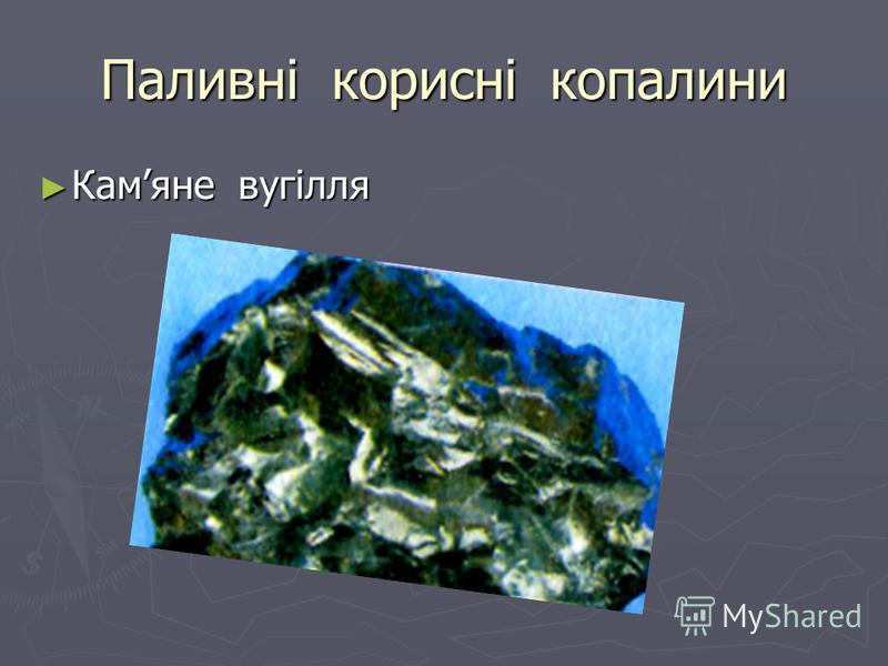 Паливні корисні копалини Камяне вугілля Камяне вугілля