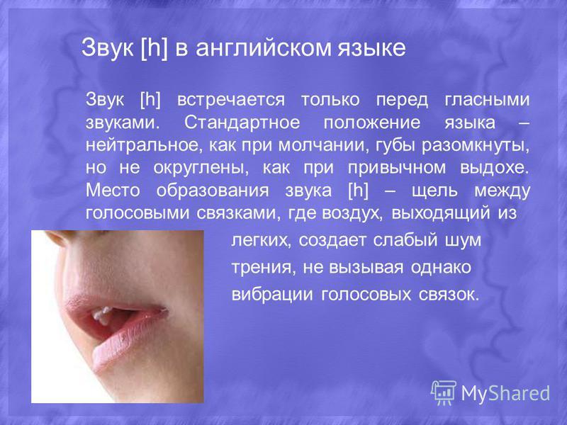 Звук [h] в английском языке Звук [h] встречается только перед гласными звуками. Стандартное положение языка – нейтральное, как при молчании, губы разомкнуты, но не округлены, как при привычном выдохе. Место образования звука [h] – щель между голосовы