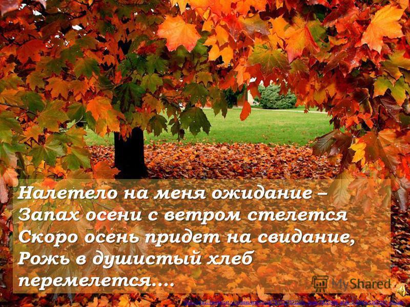http://img1.liveinternet.ru/images/attach/c/4/78/711/78711251_large_78117466_large_0_8345a_c367c2d7_XXL.jpg Налетело на меня ожидание – Запах осени с ветром стелется Скоро осень придет на свидание, Рожь в душистый хлеб перемелется….