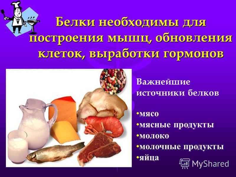 Белки необходимы для построения мышц, обновления клеток, выработки гормонов Важнейшие источники белков мясо мясные продукты молоко молочные продукты яйца
