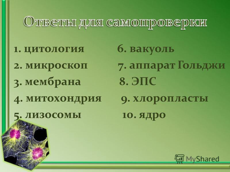 1. цитология 6. вакуоль 2. микроскоп 7. аппарат Гольджи 3. мембрана 8. ЭПС 4. митохондрия 9. хлоропласты 5. лизосомы 10. ядро