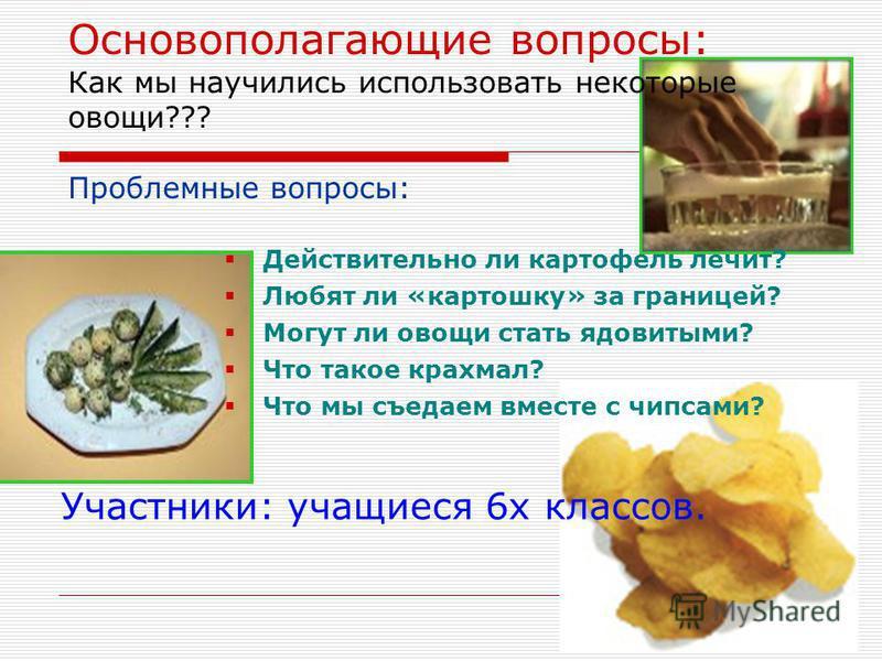 Основополагающие вопросы: Как мы научились использовать некоторые овощи??? Проблемные вопросы: Действительно ли картофель лечит? Любят ли «картошку» за границей? Могут ли овощи стать ядовитыми? Что такое крахмал? Что мы съедаем вместе с чипсами? Учас
