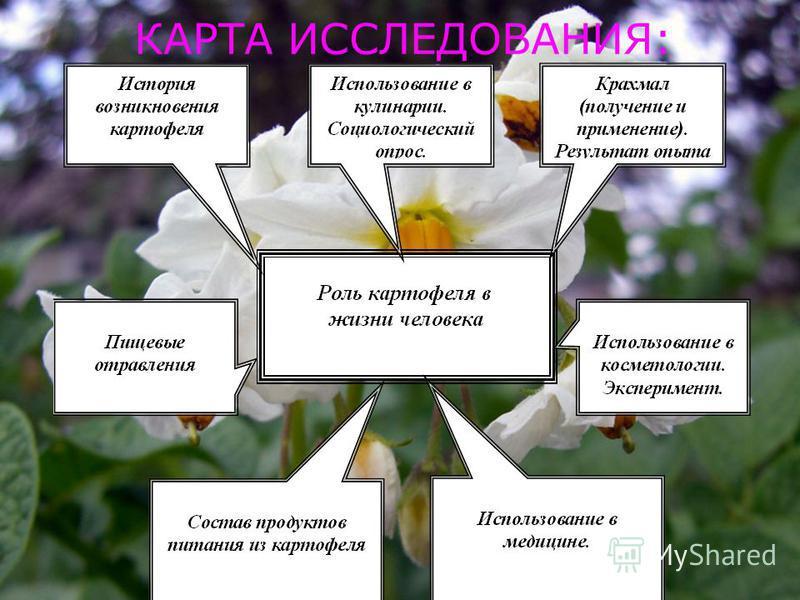 КАРТА ИССЛЕДОВАНИЯ: