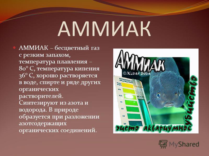 АММИАК АММИАК – бесцветный газ с резким запахом, температура плавления – 80° С, температура кипения 36° С, хорошо растворяется в воде, спирте и ряде других органических растворителей. Синтезируют из азота и водорода. В природе образуется при разложен