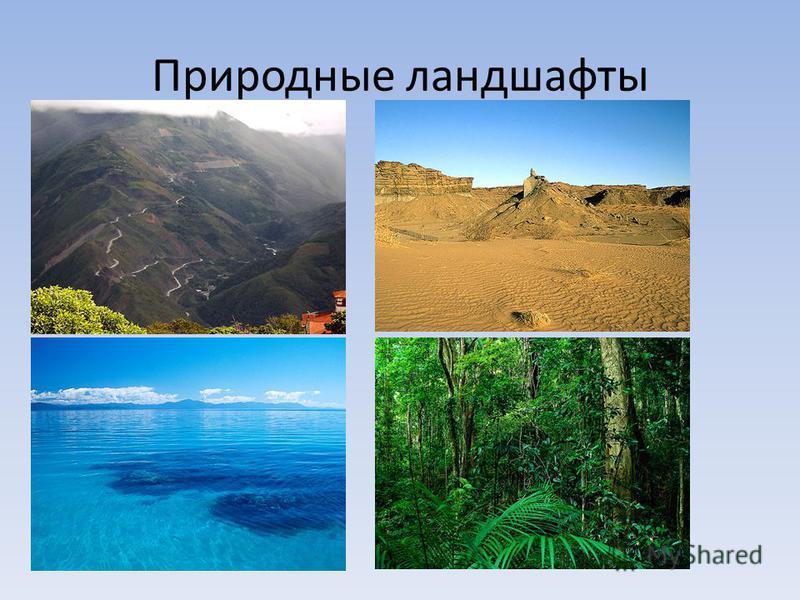 Природные ландшафты