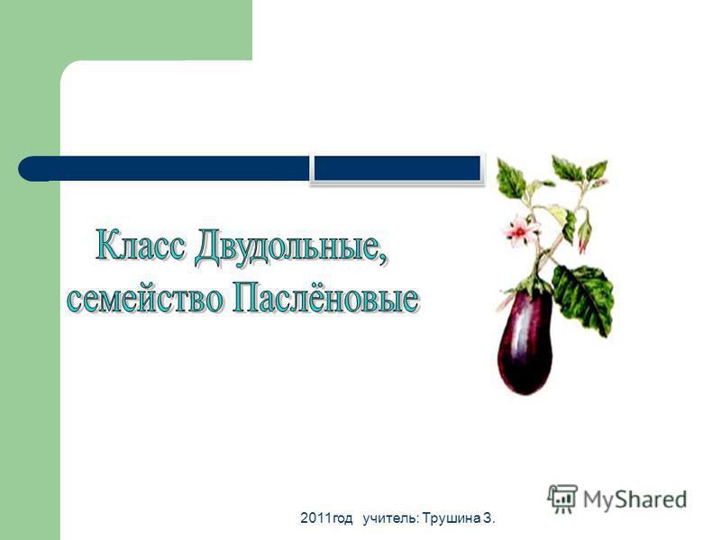 2011 год учитель: Трушина З.