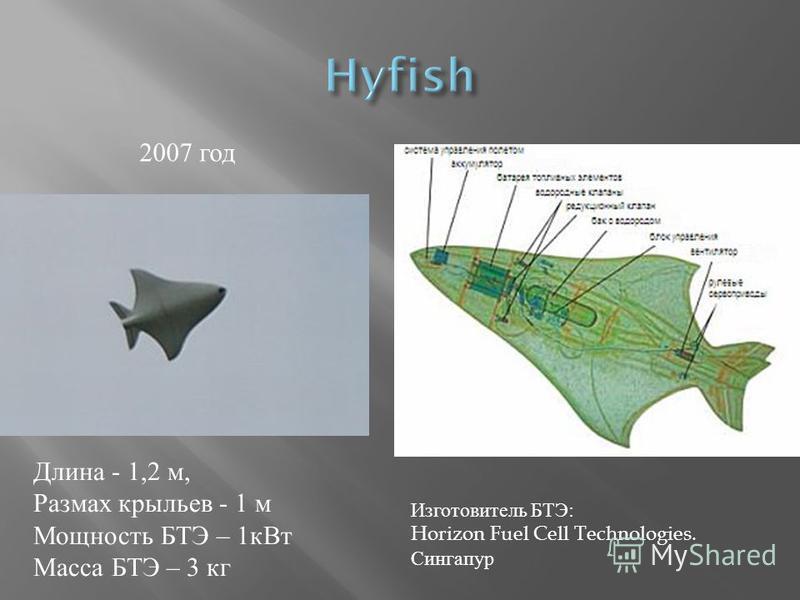 Длина - 1,2 м, Размах крыльев - 1 м Мощность БТЭ – 1 к Вт Масса БТЭ – 3 кг 2007 год Изготовитель БТЭ: Horizon Fuel Cell Technologies. Сингапур