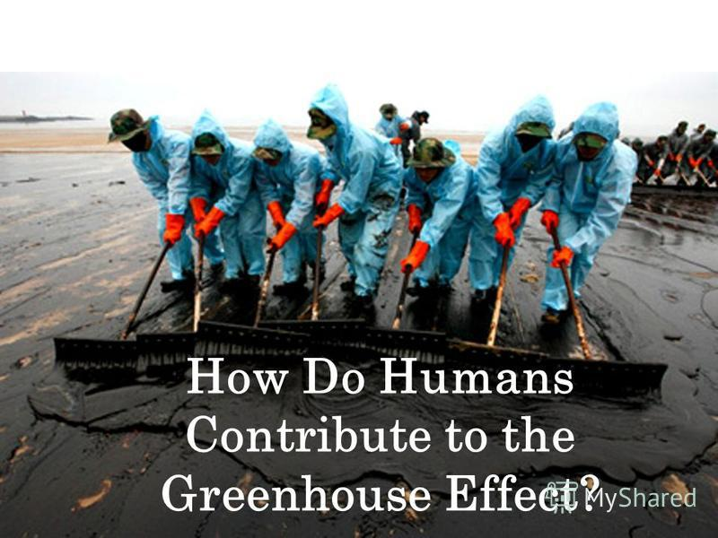 How Do Humans Contribute to the Greenhouse Effect?