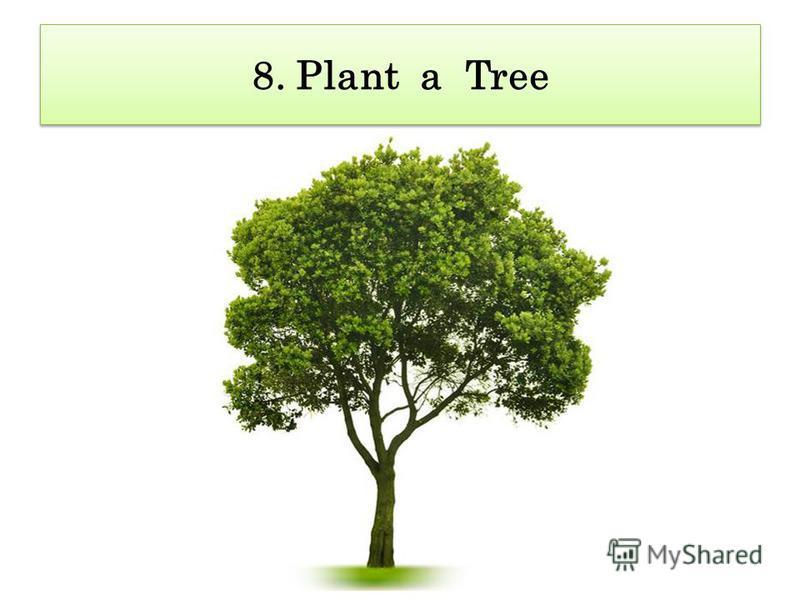 8. Plant a Tree 8. Plant a Tree