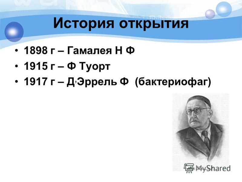История открытия 1898 г – Гамалея Н Ф 1915 г – Ф Туорт 1917 г – Д, Эррель Ф (бактериофаг)