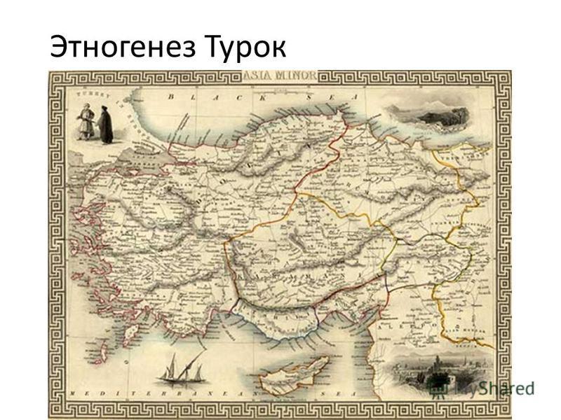 Этногенез Турок