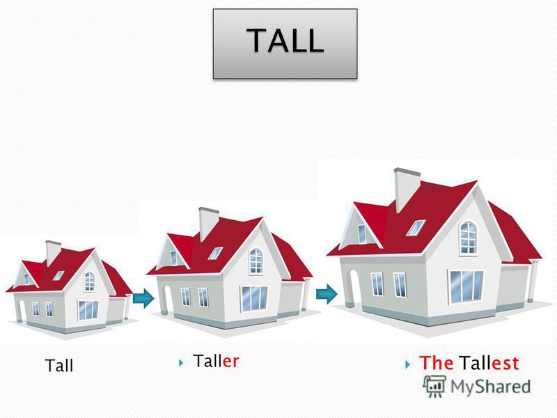 Tall The Tallest Taller