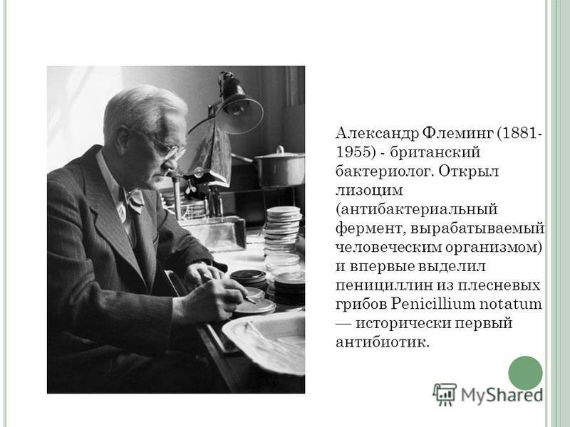 Александр Флеминг (1881- 1955) - британский бактериолог. Открыл лизоцим (антибактериальный фермент, вырабатываемый человеческим организмом) и впервые выделил пенициллин из плесневых грибов Penicillium notatum исторически первый антибиотик.
