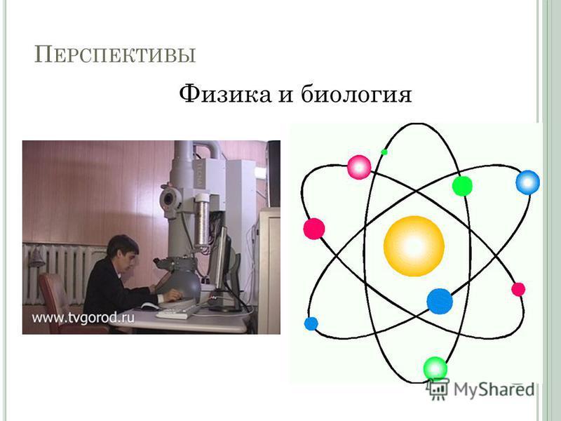 П ЕРСПЕКТИВЫ Физика и биология