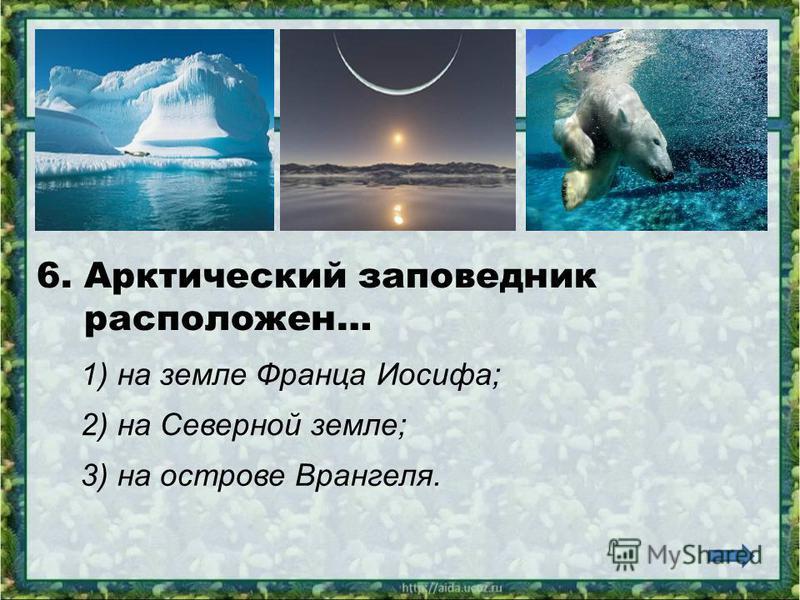 5. В Арктике обитают животные… 1) бобры, нутрии, хомяки; 2) волки, бурые медведи, рыси; 3) моржи, тюлени, белые медведи.