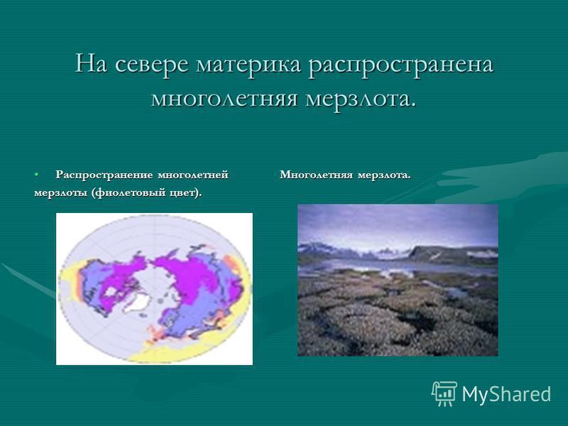 На севере материка распространена многолетняя мерзлота. Распространение многолетней Многолетняя мерзлота.Распространение многолетней Многолетняя мерзлота. мерзлоты (фиолетовый цвет).