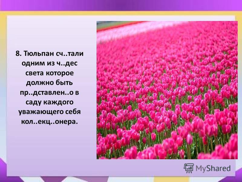 8. Тюльпан сч..тали одним из ч..дес света которое должно быть пр..доставлен..о в саду каждого уважающего себя кол..екц..онера.