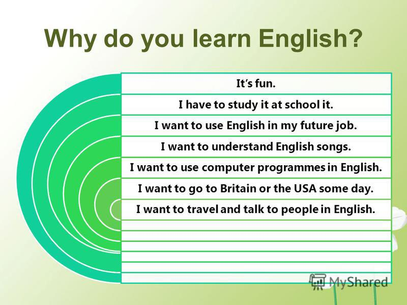 Why Do We Need To Study English Language Essay
