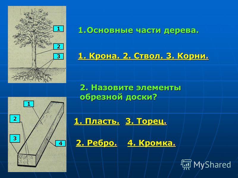 1 2 3 1. Основные части дерева. 1. Крона. 2. Ствол. 3. Корни. 1 2 3 4 2. Назовите элементы обрезной доски? 1. Пласть. 2. Ребро. 3. Торец. 4. Кромка.