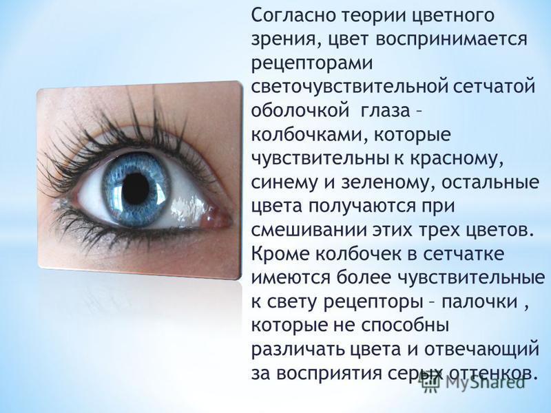 Согласно теории цветного зрения, цвет воспринимается рецепторами светочувствительной сетчатой оболочкой глаза – колбочками, которые чувствительны к красному, синему и зеленому, остальные цвета получаются при смешивании этих трех цветов. Кроме колбоче