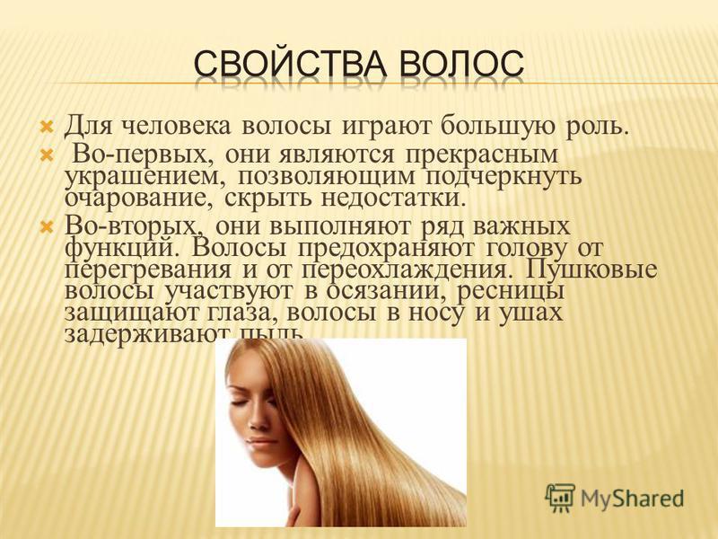 Для человека волосы играют большую роль. Во - первых, они являются прекрасным украшением, позволяющим подчеркнуть очарование, скрыть недостатки. Во - вторых, они выполняют ряд важных функций. Волосы предохраняют голову от перегревания и от переохлажд