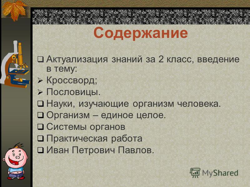 Автор: Москалева М.И., учитель естествознания МОУНШ-Д/С 20 2008 г. Мы и здоровье