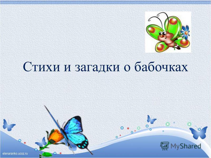 Стихи и загадки о бабочках