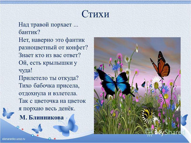 Стих про бабочку для 4 лет
