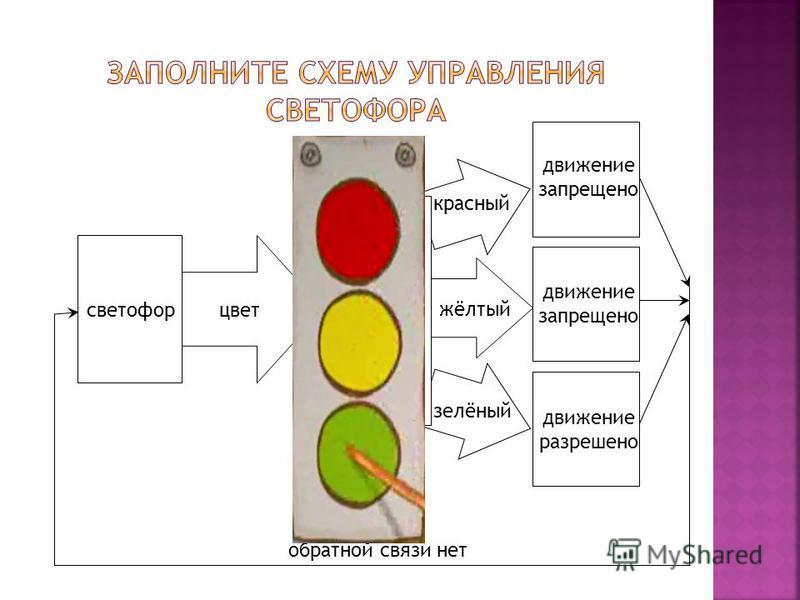 светофор цвет участники движения красный движение запрещено движение разрешено жёлтый зелёный обратной связи нет
