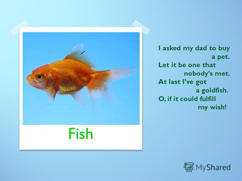 I asked my dad to buy a pet. Let it be one that nobodys met. At last Ive got a goldfish. O, if it could fulfill my wish! Fish