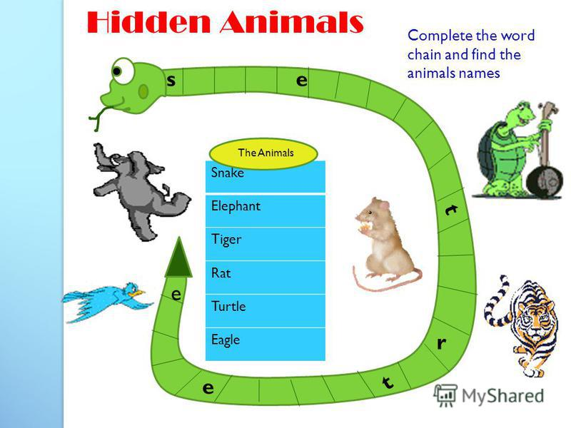 e t t e s e Hidden Animals Complete the word chain and find the animals names Snake Elephant Tiger Rat Turtle Eagle The Animals r