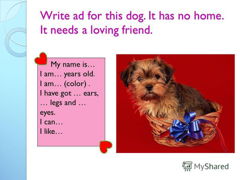 Write ad for this dog. It has no home. It needs a loving friend. My name is… I am… years old. I am… (color). I have got … ears, … legs and … eyes. I can… I like…