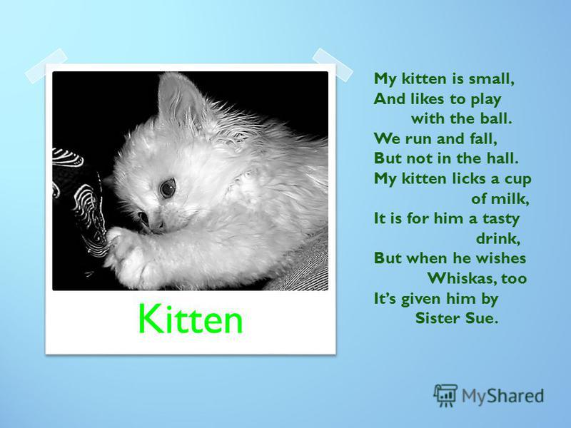 My kitten is small, And likes to play with the ball. We run and fall, But not in the hall. My kitten licks a cup of milk, It is for him a tasty drink, But when he wishes Whiskas, too Its given him by Sister Sue. Kitten