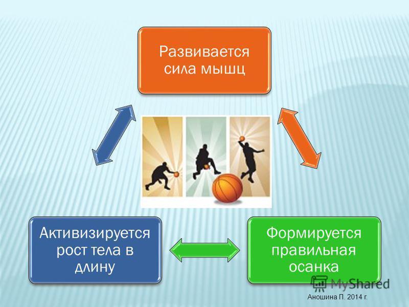 Развивается сила мышц Формируется правильная осанка Активизируется рост тела в длину Аношина П. 2014 г.