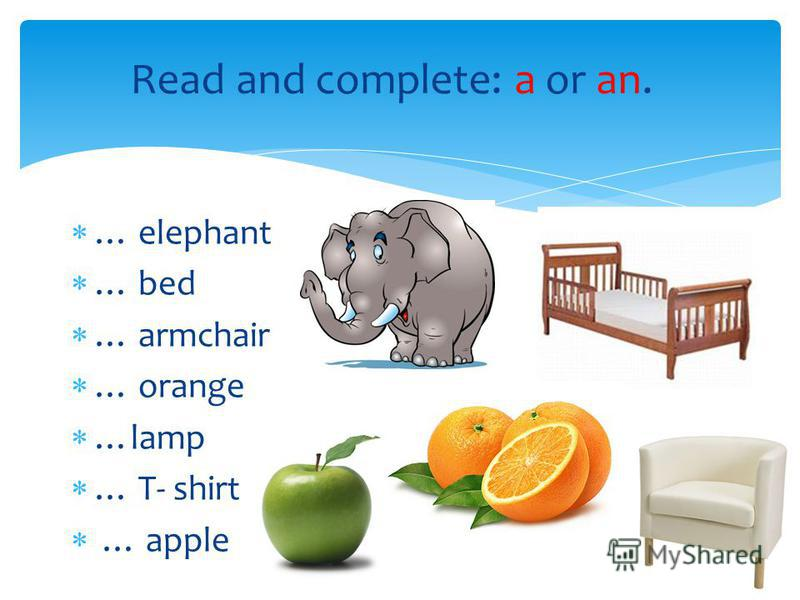 Read and complete: a or an. … elephant … bed … armchair … orange …lamp … T- shirt … apple