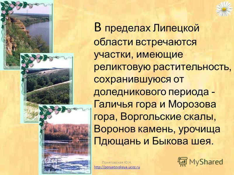 Липецкая область располагается в лесостепной зоне. Для этой зоны характерно чередование лесной растительности и степной. Растительность области насчитывает около 1200 видов, в том числе 40 видов деревьев и кустарников. Понятовская Ю.Н. http://ponyato