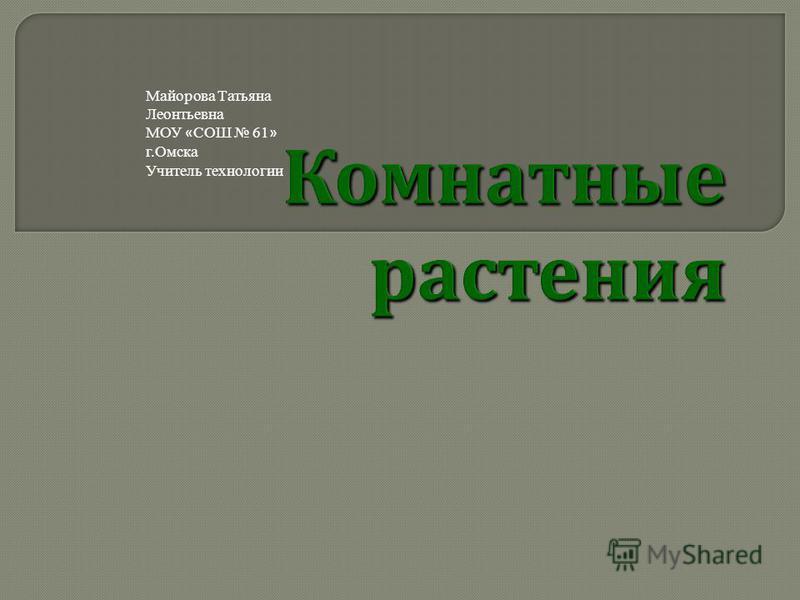 Майорова Татьяна Леонтьевна МОУ « СОШ 61 » г.Омска Учитель технологии