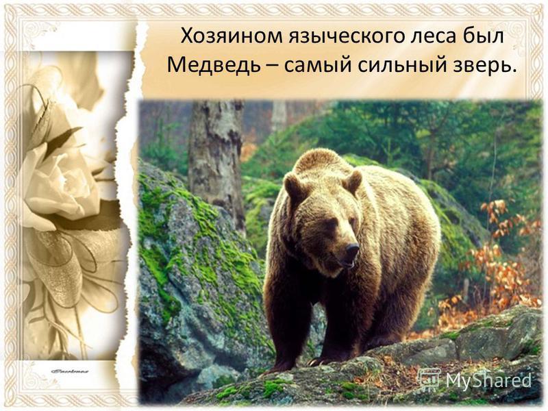 Хозяином языческого леса был Медведь – самый сильный зверь.