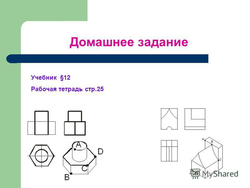 Домашнее задание Учебник §12 Рабочая тетрадь стр.25