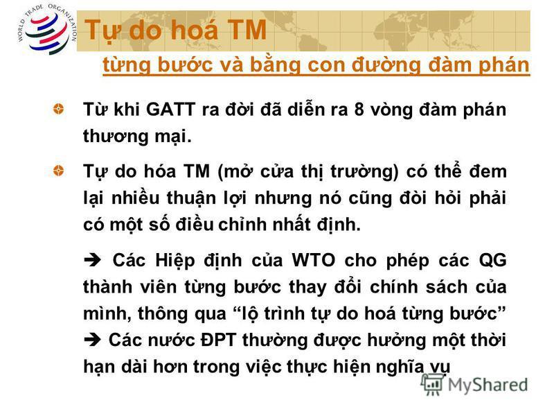 T do hoá TM T khi GATT ra đi đã din ra 8 vòng đàm phán thương mi. T do hóa TM (m ca th trưng) có th đem li nhiu thun li nhưng nó cũng đòi hi phi có mt s điu chnh nht đnh. Các Hip đnh ca WTO cho phép các QG thành viên tng bưc thay đi chính sách ca mìn