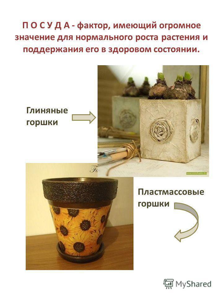 П О С У Д А - фактор, имеющий огромное значение для нормального роста растения и поддержания его в здоровом состоянии. Глиняные горшки Пластмассовые горшки